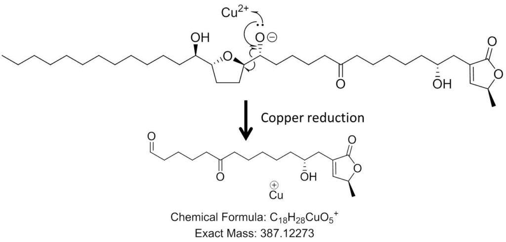 Fragmentation radicalaire induite par le changement de degré d'oxydation du Cu2+ après activation collisionnelle