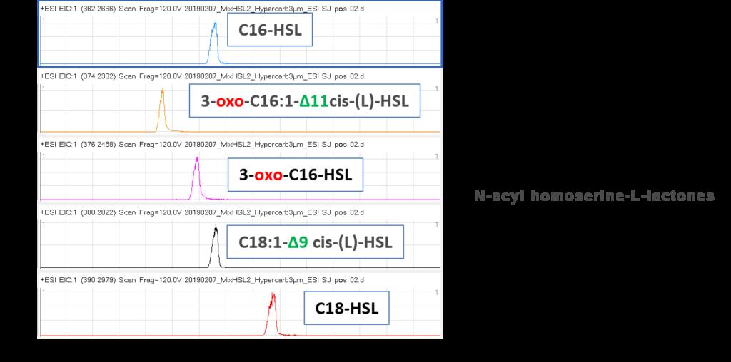 Séparation SFC-HRMS de N-acyl homosérine-L-lactones (HSLs)