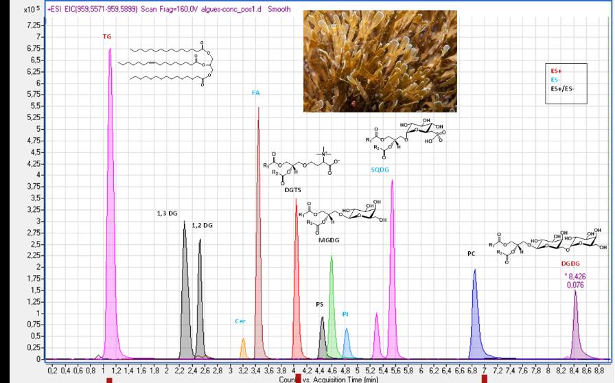 Profilage global de mélanges de lipides complexes par SFC-HRMS