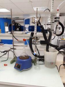 Préparation de l'huile essentielle des fruits de Sextonia Rubra